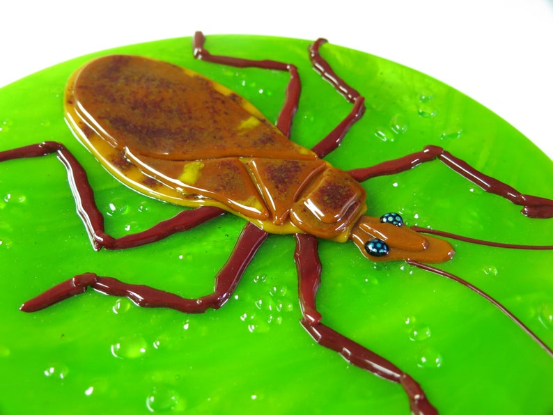 Chagas Disease Dinner Plate Set