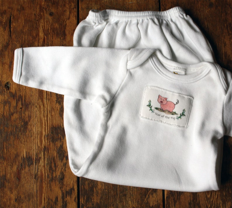 22272c306433 Year of the Pig or Boar 2019 Baby Gown Chinese New Year Gown