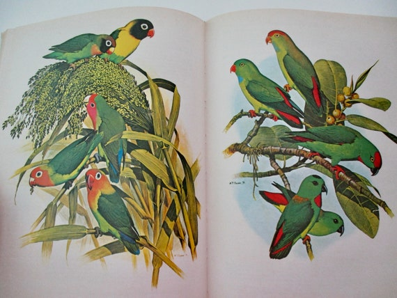 70s Book Parrots Of The World Hardcover Reference Facts