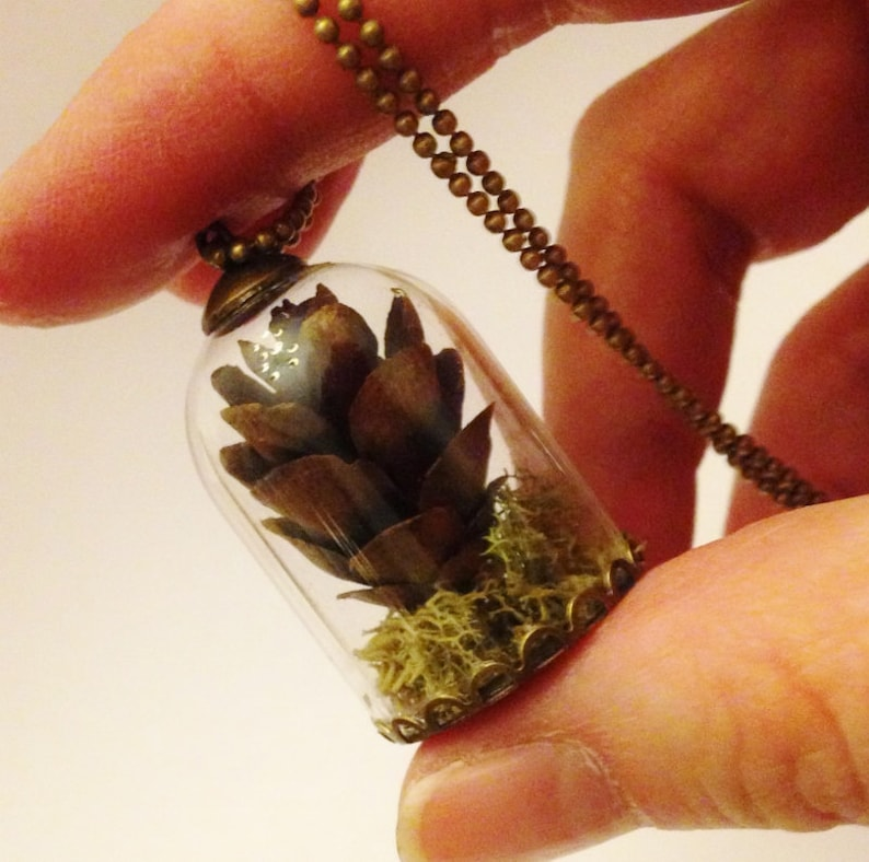 Pine Cone Necklace: REAL Dried Pine Cone & Moss Fall Autumn image 0