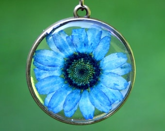 Blue Daisy Necklace, Real Flower Necklace, Blue Chrysanthemum, Botanical Jewelry, Pressed Flower Jewelry, Flor Pendant