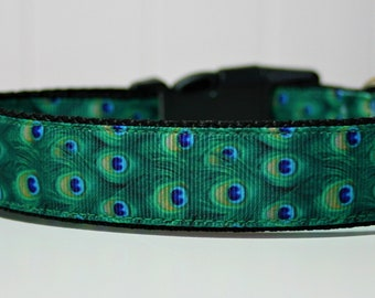 Dog Collars + Leads