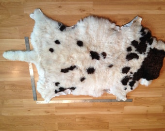 "ON SALE Beautiful Soft Larger Jacob Sheep hide with 10"" tail"
