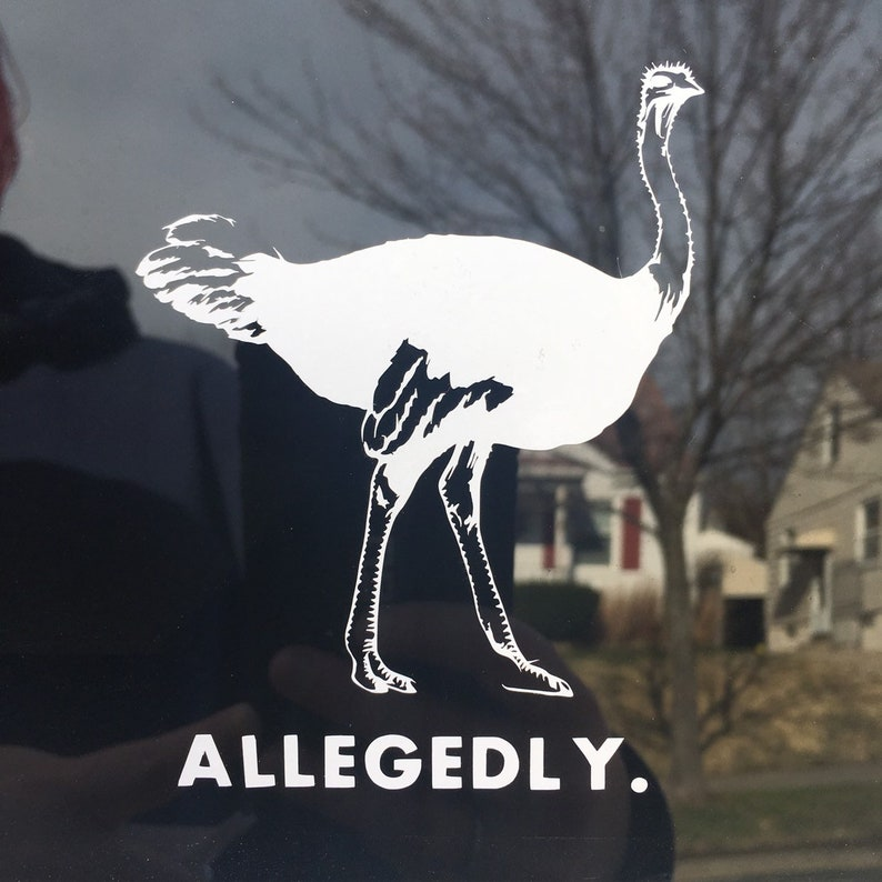 Allegedly Ostrich Letterkenny Decal image 0