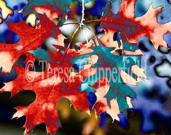Abstract Fall Leaves Print, Autumnal Photo, Red Leaves Print, Abstract Leaf Photo, Blue Photo, Abstract Fall Photo, Rustic Landscape Photo