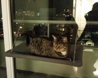 Browns, beiges - Curious Cats Window Perch