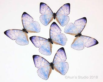 Pearl morpho butterfly, realistic paper butterfly cutout, 5 pieces
