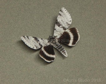Paper moths, Paper moth cutouts, Realistic paper moths, Black and white moth, set of five