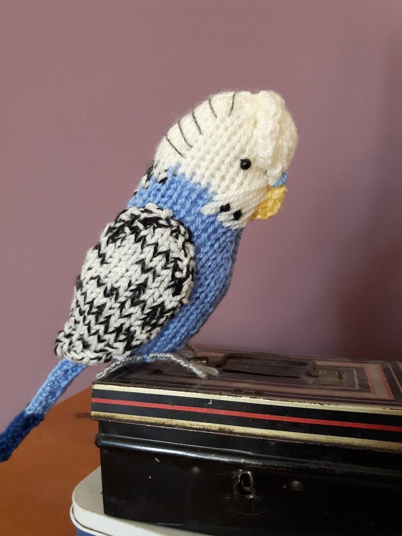 Parakeet knitting pattern - green and blue budgie knitting pattern Sparky  and Coco cute budgerigar parrot