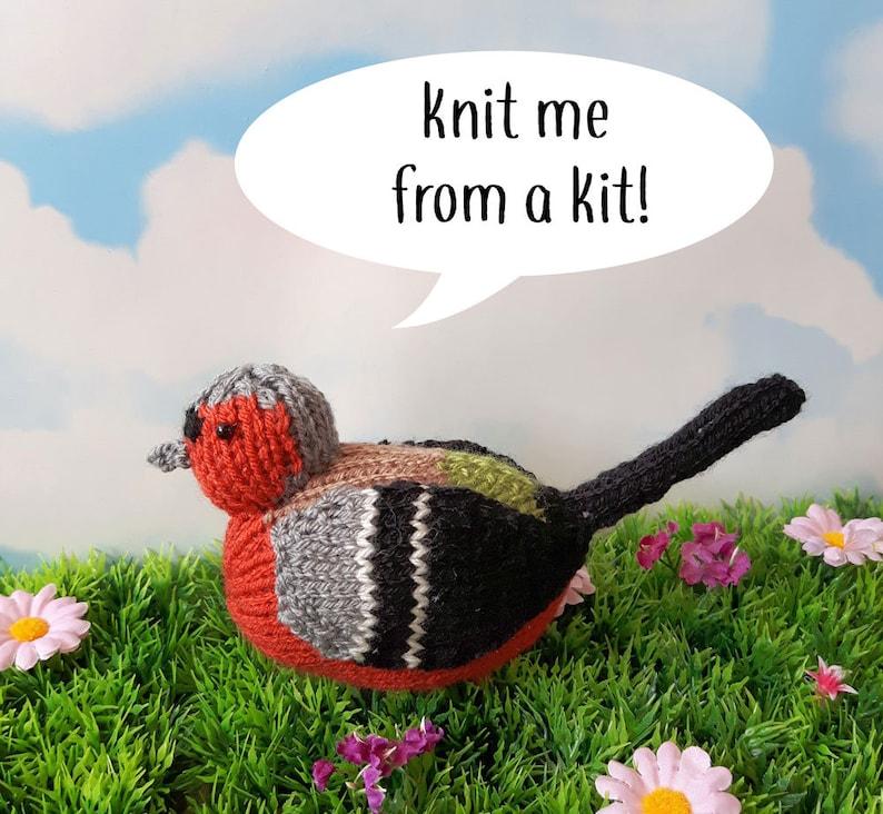 Chaffinch knit kit  Steve the Chaffinch cute bird knit kit image 0