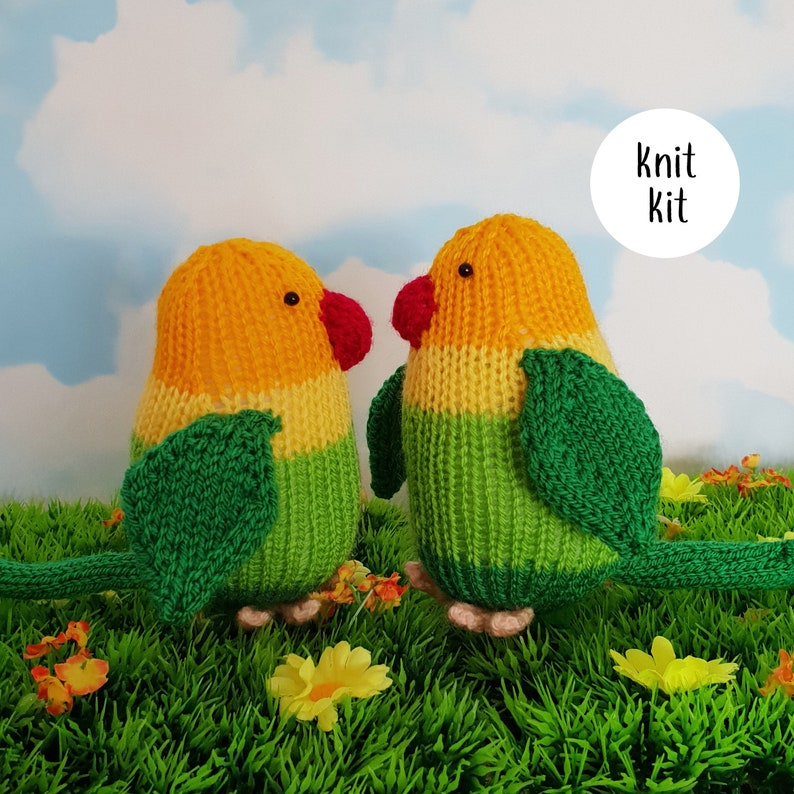 Lovebirds knit kit  cute love birds knitting kit with button image 0
