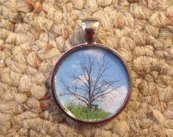 Original Photography Creepy Tree Pendant Necklace-FREE SHIPPING-
