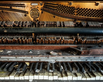 Abandoned 1925 Cable Piano Fine Art Print