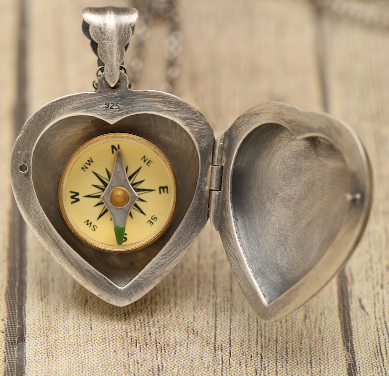 Nature Inspired Jewelry Heart Locket Necklace Dragonfly Gifts For Women Bronze Dragonfly Sterling Silver Photo Pendant July Birthstone