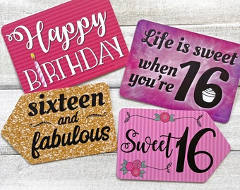 Plastic Photo Booth Phrases - SWEET SIXTEEN - Set of 2 colorful signs