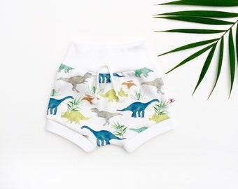 Dinosaur Kids Shorts, Organic Baby Shorts, Dino Shorties, Spring Kids Shorts, Summer Baby Shorts