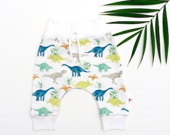 Dinosaur Kids Pants, Organic Baby Pants, Dino Baby Leggings, Spring Kids Pants, Gift Under 30