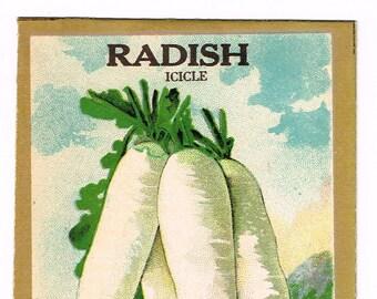 Original vintage chromolithographed seed packet pack NOS c1920 General Store garden folk art Fredonia New York Radish Icicle
