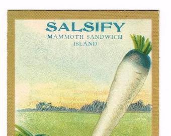 Original vintage chromolithographed seed packet pack c1920 General Store garden folk art Fredonia New York Salsify Mammoth Sandwich Islands