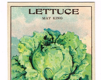 Original vintage chromolithographed seed packet pack NOS c1920 General Store garden folk art Fredonia New York May King Lettuce