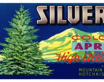 ORIGINAL CRATE LABEL VINTAGE COLORADO SILVER SPRUCE APRICOTS HOTCHKISS ROCKIES