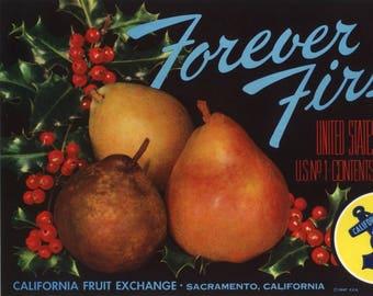 Original vintage pear crate label 1940s Forever First Brand Mistletoe Xmas Christmas Holidays Sacramento California