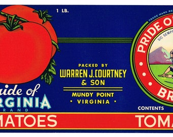 10 Different Original Unused Vintage 1920/'s 1940/'s Colorful Catsup Labels
