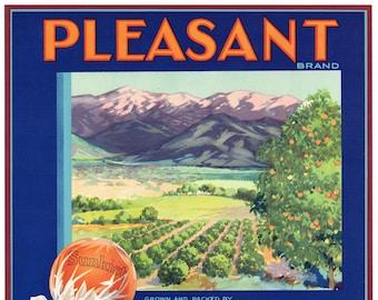 Original vintage citrus crate label 1940s Pleasant Success Tulare County California Plein Aire Mountains Orchard