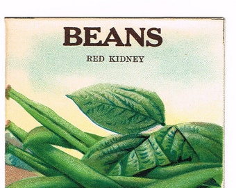 Original vintage chromolithographed seed packet pack NOS c1920 General Store garden folk art Fredonia New York Beans Red Kidney