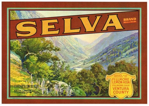 ORIGINAL SAN ANTONIO LEMON CRATE LABEL ONTARIO MT BALDY 1930S CREEK CANYON