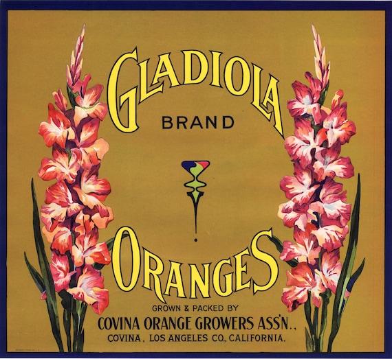 1930s DAISY COVINA CALIFORNIA ORIGINAL ORANGE CRATE LABEL FLOWER KITCHEN ART
