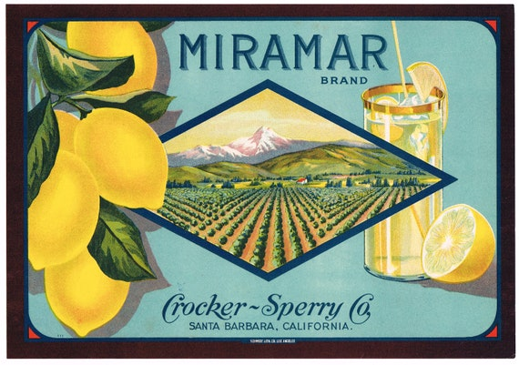 Vintage Original Label Santa Barbara Calif 1930s FESTIVAL Fruit Crate Label
