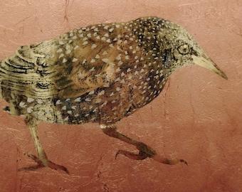 Étourneau - oiseau / véritable or / 20k / or jaune / or blanc / cuivre / art / verre eglomise / réaliste / animal / motifs / rond