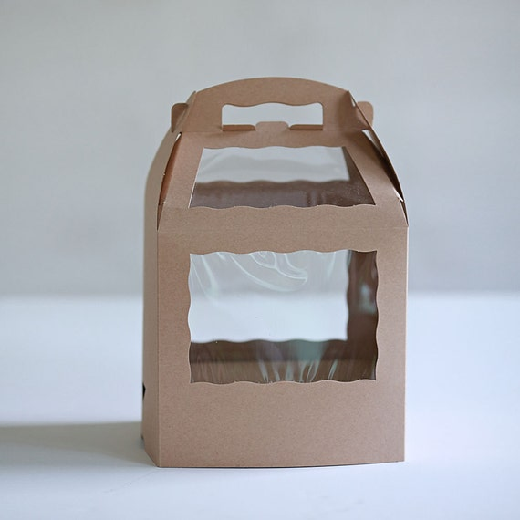 Set of 10 - 8.5 x 6 x 8 inch Kraft Brown or White Cake Pop Box with base for sticks or straws