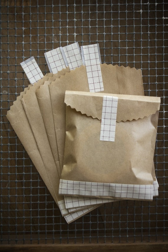 Kraft Bag Envelopes with Brown Grid Washi Tape 10 pieces 4x6
