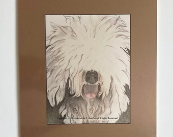 Old English Sheepdog Matted Poster