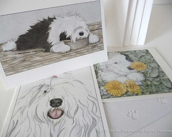 Multi-pack Notecards (12 count)-Old English Sheepdog