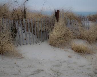 Beach Photography, Sandy Neck, Cape Cod, Barnstable, MA, Sand, Grass, Fence, Cape Cod Bay, Nature, Wall Art, Home Decor, Beach Decor