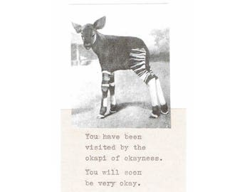 Okapi Of Okayness Card | Funny Get Well Soon Card Weird Typed Nerdy Indie Animal Humor Vintage For Him For Her