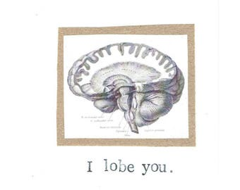 I Lobe You Card | Funny Valentine Brain Anatomy Science Pun Nerdy Geeky Psychology Medical Humor Love For Him Doctor Nurse