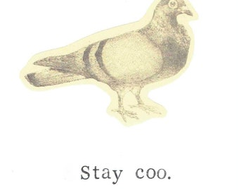 Stay Coo Pigeon Card | Funny Bird Pun Humor Nerdy Nature Birthday Card Thank You Hipster Animals Men Women For Him For Her