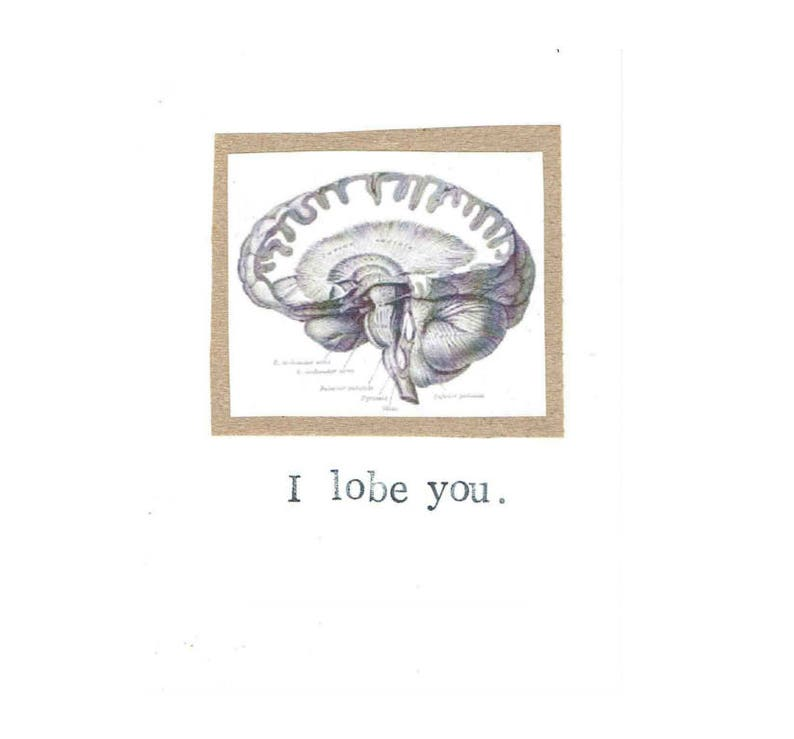 I Lobe You Card  Funny Valentine Brain Anatomy Science Pun image 0