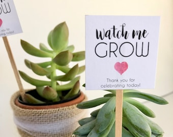 "Auto Download Mini Succulent ""Watch Me Grow"" Printable Favor Tags"