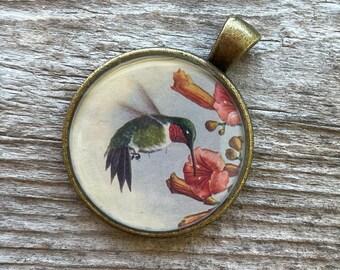 Hummingbird Keychain or Pendant   Hummingbird Vintage Image