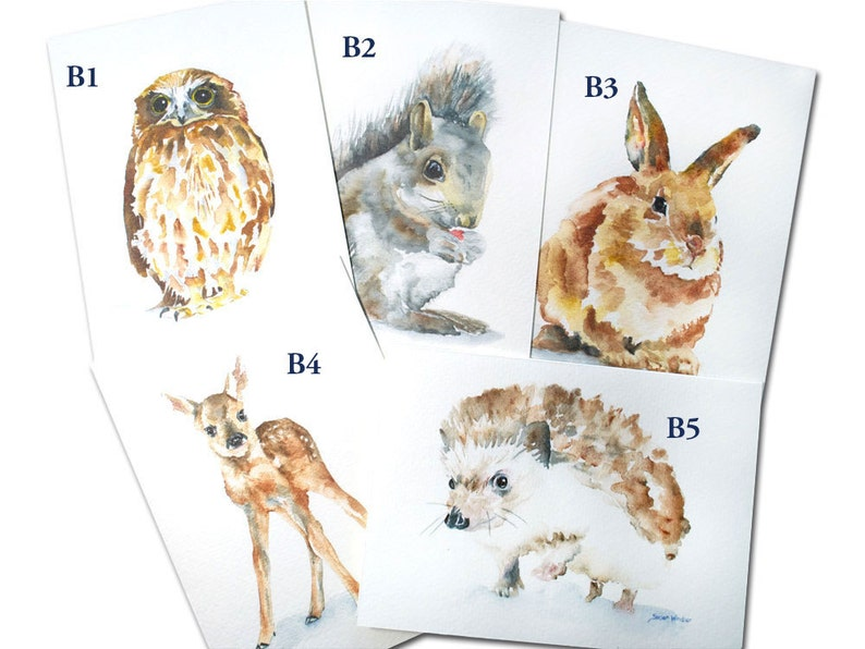 Mix and Match Set of 5 Watercolor Woodland Animal Cards