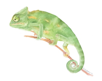 Chameleon Watercolor Painting - 11 x 14 - Boys Room Wall Art - Giclee Fine Art Print