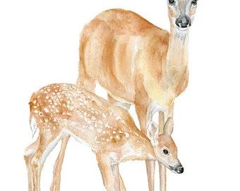 Doe and Fawn Watercolor Painting Giclee Print 8x10 Nursery Art 8.5x11 - Woodland Animals Deer