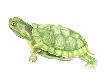 Turtle Watercolor Painting Print - 11 x 14 - Giclee Fine Art - Wall Art Animal Painting - Reptile Art