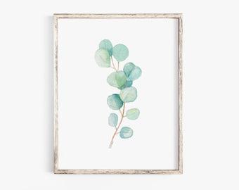 Eucalyptus Botanical Watercolor Painting Giclee Print Fine Art Print