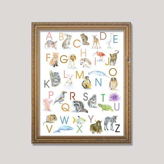 alfabet dating x ideeën 21e eeuw gids voor dating